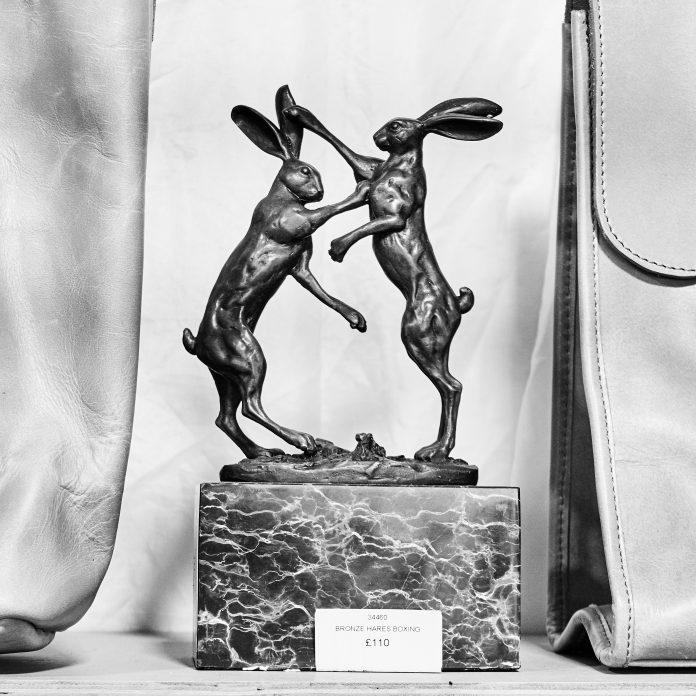 Fighting rabbits Copyright vanderbroms