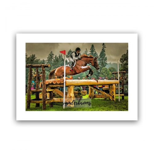 The Champion eventing art by Vanderbroms